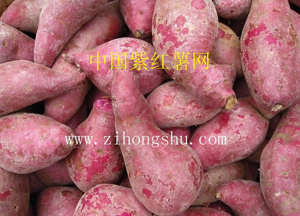 紫红薯产品