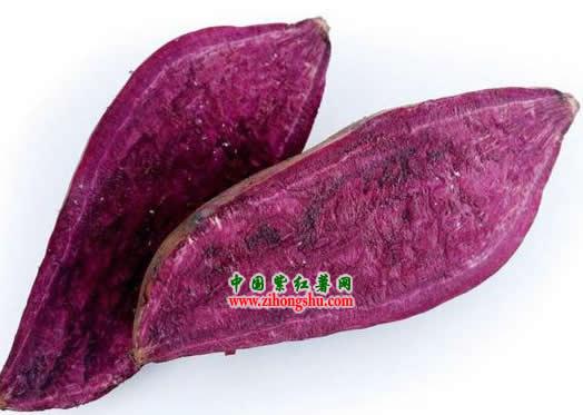 紫薯产品_紫红薯产品图片