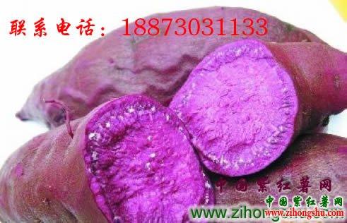 紫红薯的食用禁忌