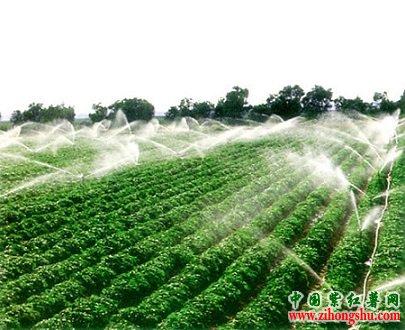 二会谈农业改革