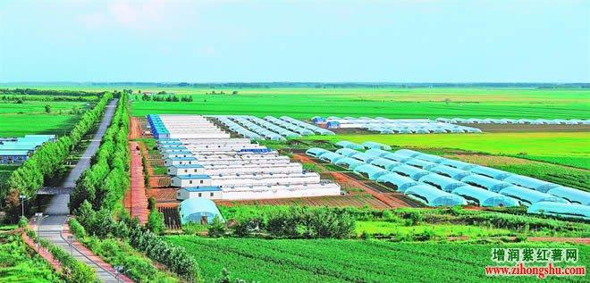 现代农业发展前景