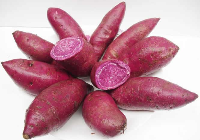 增润紫红薯